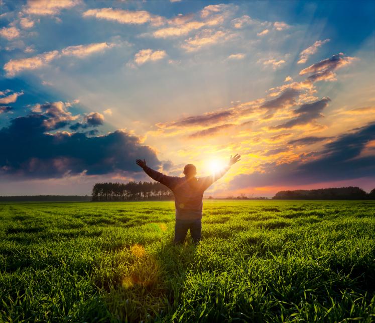 freedom_sunshine